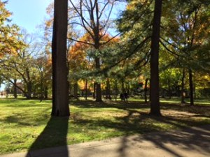 A perfect November Day walking in Notre Dame's ``God Quad''.