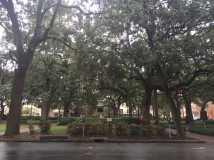 One of the many beautiful Savannah squares