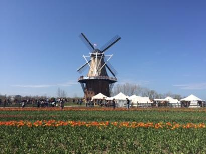 Windmill Island Park